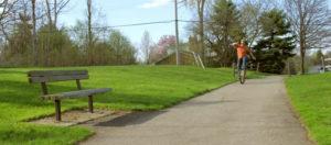 Поддръжка на зелени площи през есента