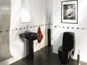 Строеж - черна тоалетна, употреба, правила