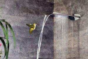 Строеж - тропически душ, ползи